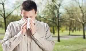 shutterstock_sneeze